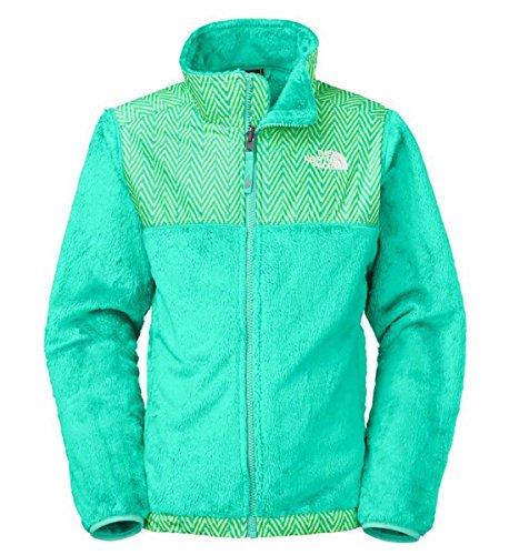 The North Face Denali Thermal Full Zip Jacket(youth) Mint Blue - Womens Thermal Jacket Denali