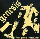 From Genesis To Revelation by Genesis (2008-06-17)