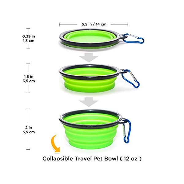 KEKS Small Dog Bowls Set of 2 Stainless Steel Bowls with Non-Skid & No Spill Silicone Stand for Small Dogs Cats Puppy & Collapsible Travel Pet Bowl 4