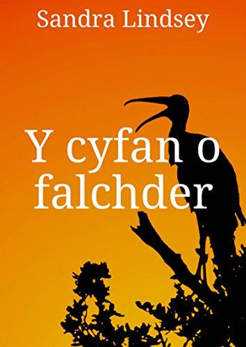 Y cyfan o falchder (Welsh Edition)