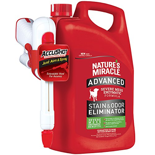 Natures Miracle Advanced Stain Eliminator