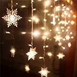 Led String Light, Warm Light White Fairy Lights Battery Operated Waterproof Outdoor/Indoor DIY Decoration Christmas Party, Wedding, Garden (Snowflakes)