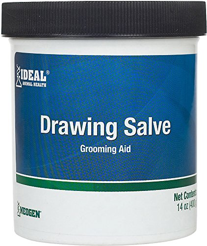 DURVET / FIRST PRIORITY 2250030 Drawing Salve - Ichthammol Ointment