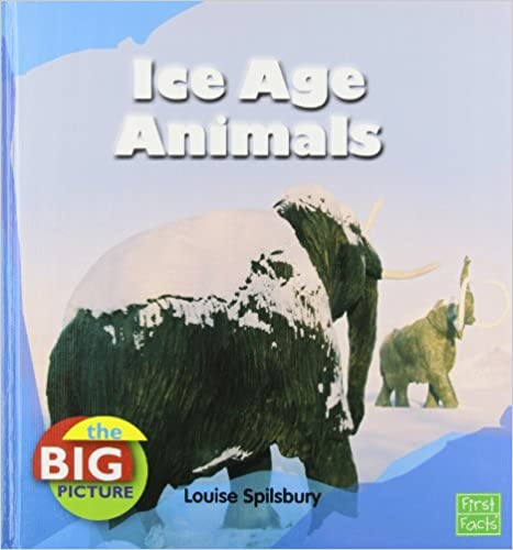 Book Ice Age Animals (The Big Picture: Climate)
