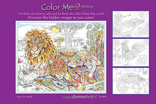Amazon.com: Color Me 2 (9781467533942): Pamela Smart: Books