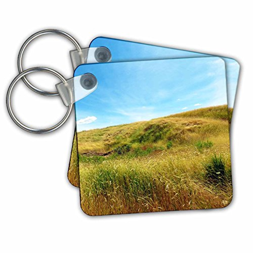 Jos Fauxtographee- Meadow on a Hill - A golden Meadow going up a hill in green and golden tones - Key Chains - set of 4 Key Chains - Field Hill Utah