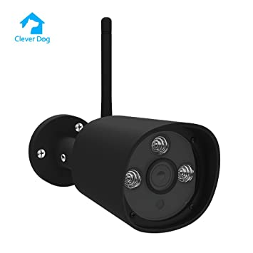 Amazon.com: Clever perro 960p cámara IP resistente a prueba ...