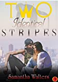 Two Identical Stripes (Book One 1)