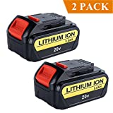 Biswaye 2Pack 20V Max Lithium Battery 5000mAh Review and Comparison
