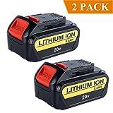 Biswaye 2Pack 20V Max Lithium Battery 5000mAh - Best Reviews Guide