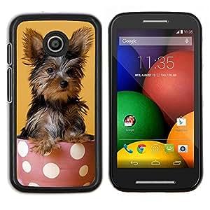 EJOOY---Cubierta de la caja de protección para la piel dura ** Motorola Moto E ** --Yorkshire Terrier de mojón Raza