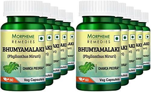 Morpheme Phyllanthus Niruri Bhumyamlaki 500mg Extract – 60 Veg Caps Pack of 10
