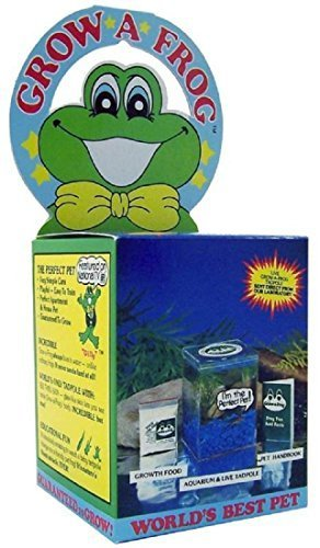 - Olympia Sports 11832 Grow-A-Frog Kit