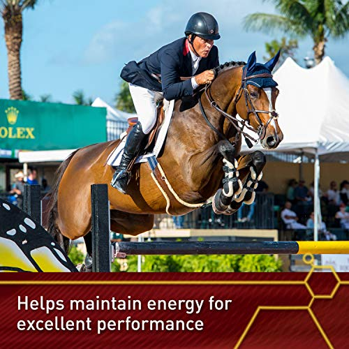 Vita Flex Lactanase Performance Supplement for Horses, Supports Healthy Muscle Function, Case of 12 by Vita Flex (Image #3)