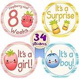 NEW! 2018 Original Stick'Nsnap (TM) 34 Pregnancy Stickers...
