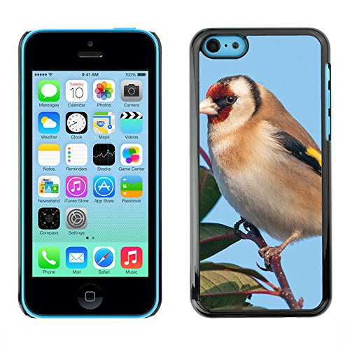 Premio Sottile Slim Cassa Custodia Case Cover Shell // F00024760 Oiseau // Apple iPhone 5C
