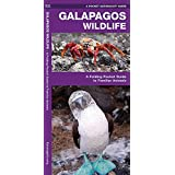 Galapagos Wildlife: A Folding Pocket Guide to Familiar Animals (Pocket Naturalist Guide Series)
