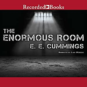 The Enormous Room Audiobook