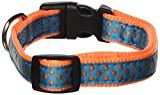 East Side Collection Nylon Polka Dot Dog Collar, 10–16-Inch, Orange