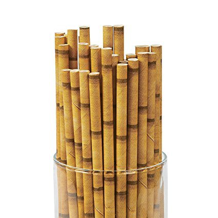 (Tiki Bamboo Print Biodegrabale Paper Straws - Multi Packs (24))
