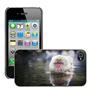 Hot Style Cell Phone PC Hard Case Cover // M00047547 asia nagano animals monkeys japanese // Apple iPhone 4 4S