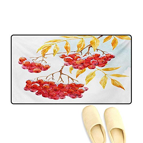 Bath Mat,Hand Drawn Watercolor Branch of Ashberry in Snowy Winter Nature,Customize Door Mats for Home Mat,Earth Yellow Red Pale Blue,32