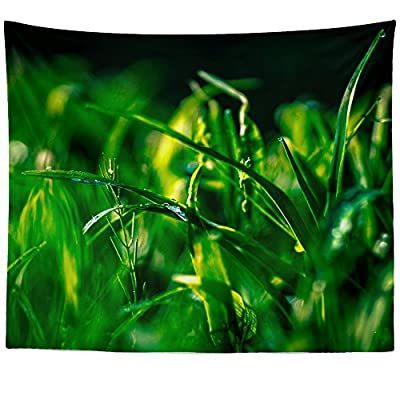 Westlake Art - Grass Plant - Wall Hanging Tapestry - Picture Photography Artwork Home Decor Living Room - 68x80 Inch (E09ED)