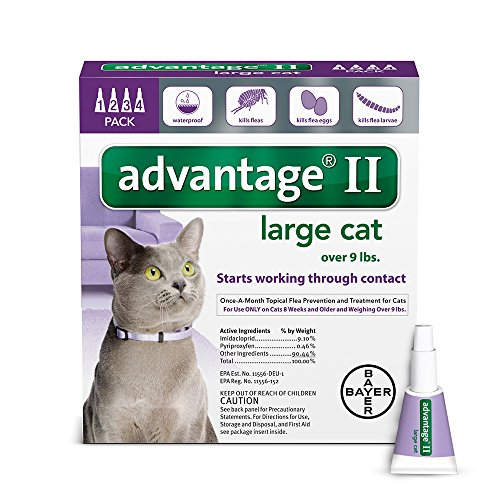 Bayer Advantage II Flea Prevention Large Cats, over 9 lbs, 4 (Et Prevention)
