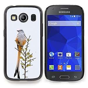 """For Samsung Galaxy Ace Style LTE/ G357 Case , Plumas de la cola del pájaro gris invierno Ornitología"""" - Diseño Patrón Teléfono Caso Cubierta Case Bumper Duro Protección Case Cover Funda"""