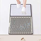 Disinfecting Floor Mat Sanitizer Mat - Sanitizing