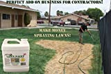 Lawn Paint Concentrate Lawn Paint, Covers up to