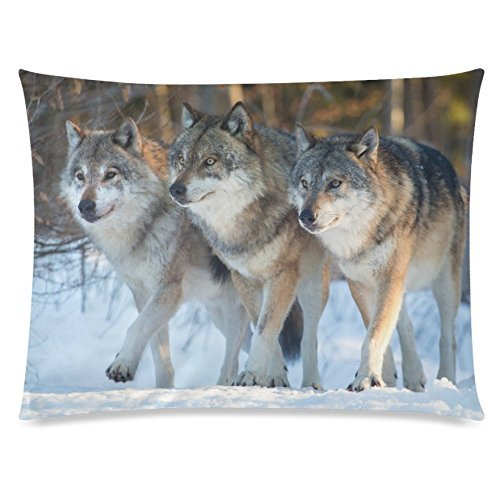 InterestPrint Animal Wild Wolf Home Decor, Winter Snow Pillowcase 20 x 26 Inches One Side, Wolf on Iceberg Pillow Cover Case Shams (Wild Animals Sham)