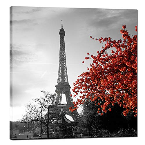 sechars - Canvas Prints Wall Art Black and White Eiffel Tower Red Flower Picture on Canvas Art Paris Wall Decorations for Living Room Bedroom Decor Framed Artwork Ready to Hang