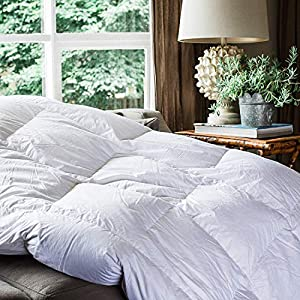 COCOON Premium Luxurious Goose Down Comforter Queen 100% Egyptian Cotton Thread 750+ Fill Power - Siberian Goose Feathers All Season Down Comforter Hypo-Allergenic Down Duvet  by Cocoon Group