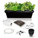 SavvyGrow DWC Hydroponics Growing System Kit - 2 Large Airstone, 14 Plant Sites (Holes) Bucket w/Air Pump - Best Indoor Herb Garden for Cilantro, Mint - Complete Hydroponic Setup Grow Fast at Home
