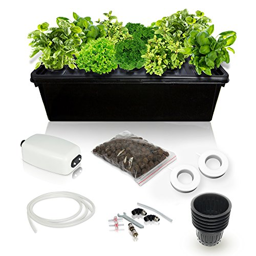 SavvyGrow DWC Hydroponics Growing System Kit - 2 Large Airstone, 14 Plant Sites (Holes) Bucket w/Air Pump - Best Indoor Herb Garden for Cilantro, Mint - Complete Hydroponic Setup Grow - Kit Hydroponic