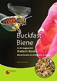 Buckfast-Biene in der angepassten Dadant-Beute: die einfachste Art erfolgreich zu imkern