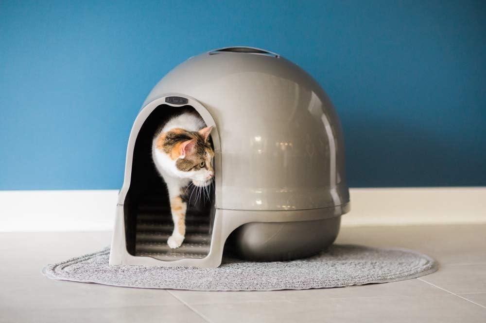 Petmate Booda Dome Clean Step Cat Litter Box 3 Colors, Brushed Nickel: Pet Supplies