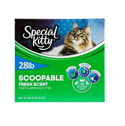 Special Kitty Multiple Cat Clumping Cat Litter, 28 lbs Outdoor Fresh Scent, Hard Clumping and Easy Scooping, Pack of 4