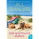 Lost and Found Sisters: A Novel