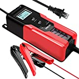 GOOLOO 6/12V Smart Battery Charger and 6A Portable Automatic Maintainer with Clamps