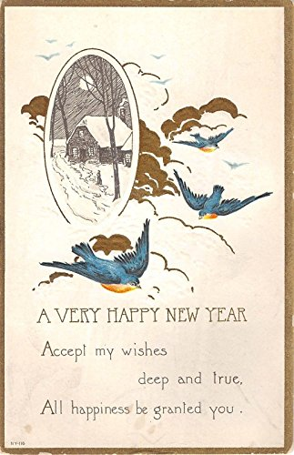 Happy New Year Greeting Poem With Blue Birds Antique Postcard V5979 (Best Poem Of The Year)
