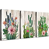 Canvas Prints Wall Decor Art Cactus Desert Plant with Spiny Flower Watercolor H