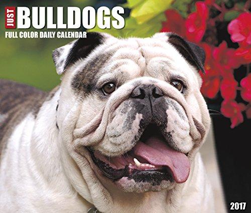 Just Bulldogs 2017 Box Calendar (Dog Breed Calendars)