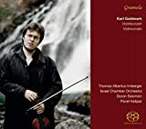 Violinkonzert / Violinsonate