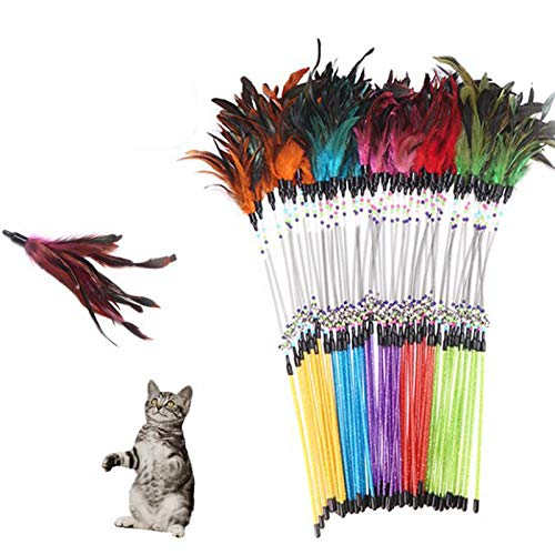 Cat Toys colorful Feather Cat Toys Funny Spring Rods with Bells Beads Kitten Interactive Plastic Stick Cat Wand Toys Pet Cat Supplies by Daicaffar 1 PCs