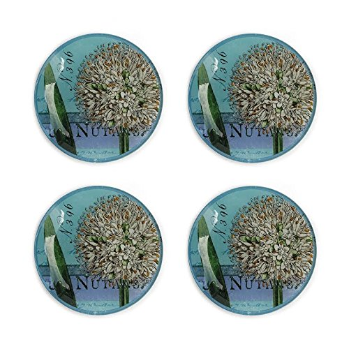 Jay Notions - The Jay Companies Notion Botanique Bleu Canape Plates/Pillar Plates, Blue