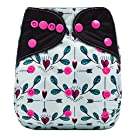 "HappyEndings Bamboo Charcoal AI2TM All-In-Two Cloth Diaper / Snap-in Insert ""Cupid's Arrows"""