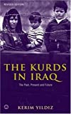 Book cover for The Kurds in Iraq: The Past, Present and Future