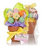 Springtime Flower Pot Cookies - 12 Cookies